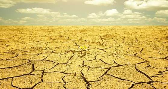 drought skinny