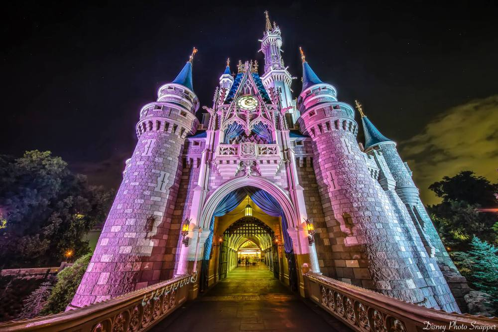 castle-magic-kingdom-dps